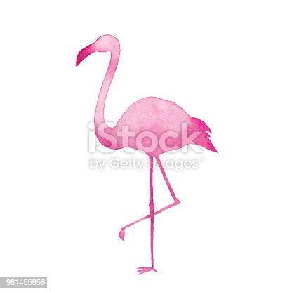 Vector illustration of watercolor flamingo.
