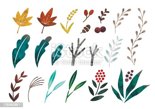 Watercolor plants icons set