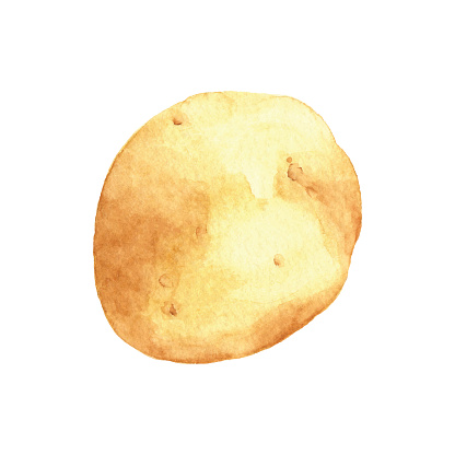 Watercolor Potato