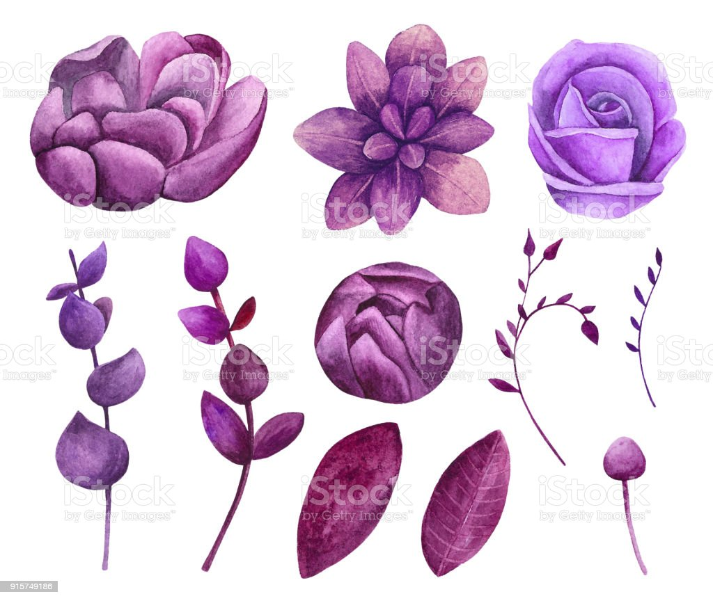 Watercolor Purple Flowers Vector Clipart Royalty Free Stock Art