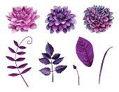Watercolor purple flowers vector . Violet flowers clipart . Purple flowers clipart . Watercolor floral clip art . Botanical clipart . Watercolor flowers isolated