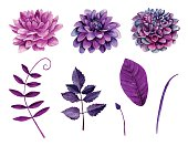 Watercolor purple flowers vector
