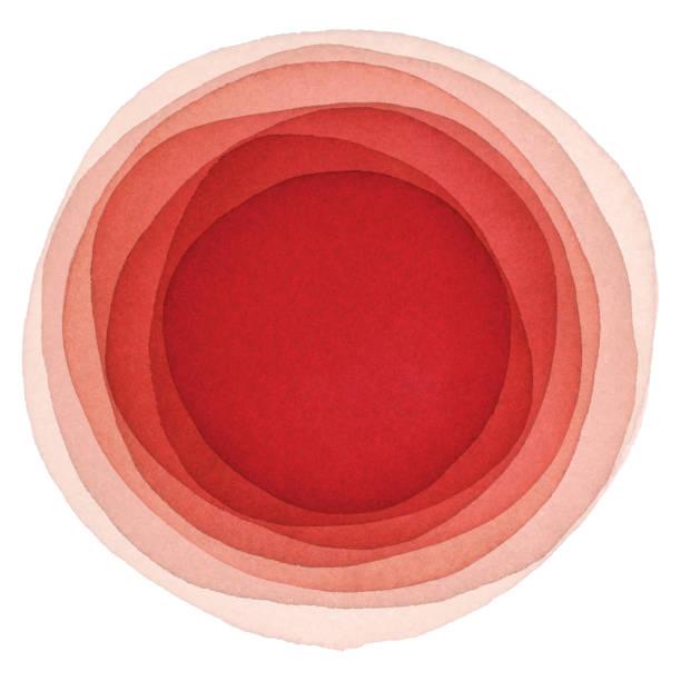 illustrazioni stock, clip art, cartoni animati e icone di tendenza di sfondo rosso acquerello con cerchi - rosa rossa