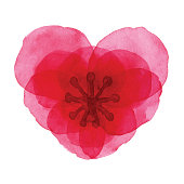 istock Watercolor Red Heart Shaped Flower 1074926888