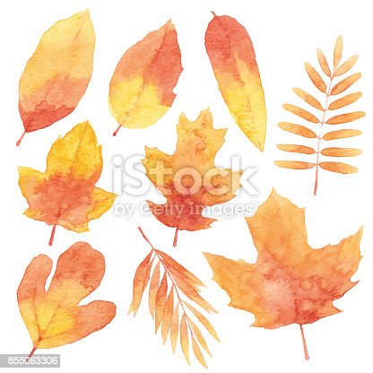 istock Watercolor Red Leaves 855063306