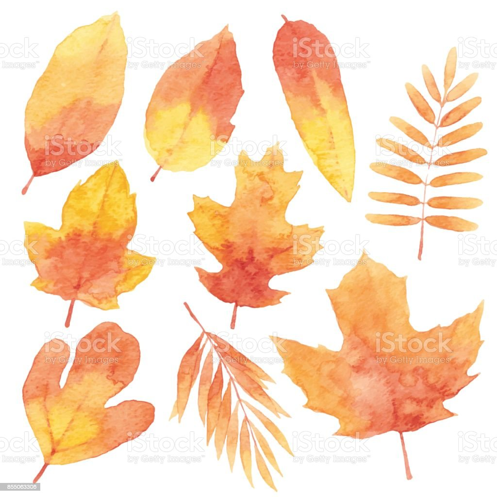 Watercolor Red Leaves vector art illustration