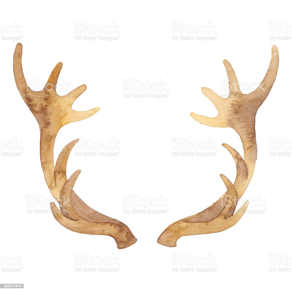 Watercolor Reindeer Horn vector art illustration