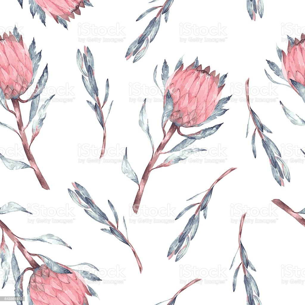Watercolor seamless pattern with protea vector art illustration