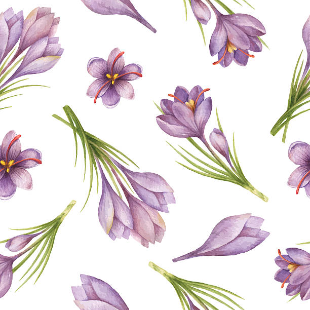 66f0b33613f50 Watercolor seamless pattern with saffron flowers and branches. vector art  illustration