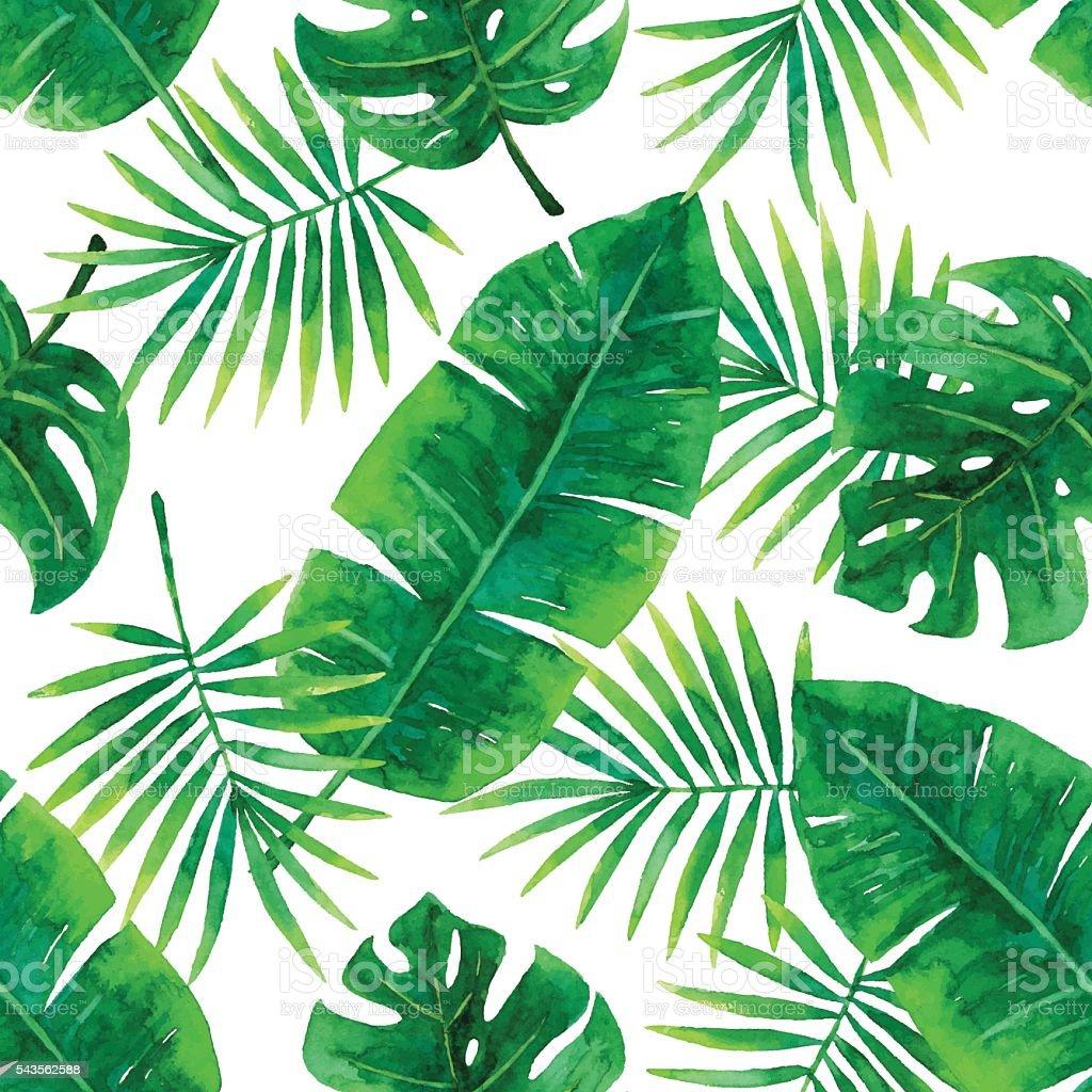 Aquarela sem costura padrão Tropical - ilustração de arte em vetor