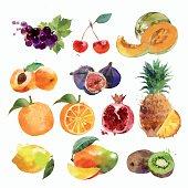watercolor set of fruits
