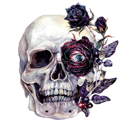 Watercolor Skull and Flowers Halloween Illustration