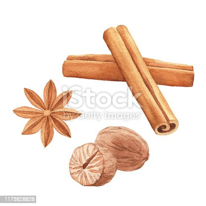 Vector illustration of spices.