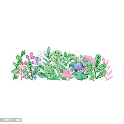 Vector illustration of watercolor plants.
