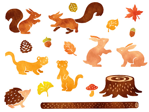 Watercolor style illustration set of small animals in the forest and autumn leaves