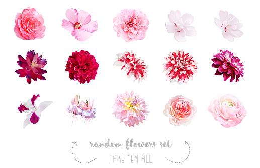 Watercolor style various flowers set.