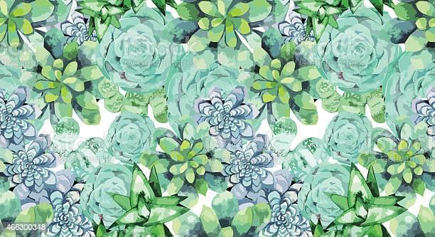 Watercolor succulent pattern vector id466300348?b=1&k=6&m=466300348&s=612x612&h=umq7cfd8 f9juyebdp98rx kpk3d2bpgbkmcnrm6mqa=