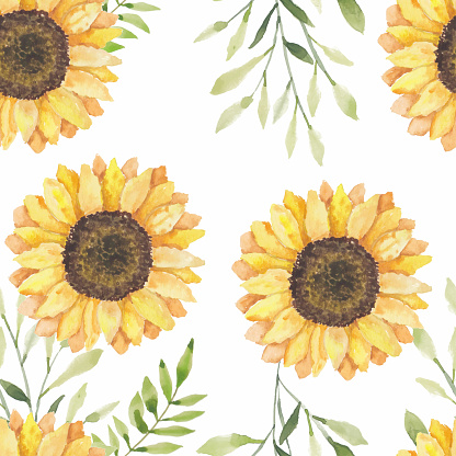 Watercolor sunflower floral seamless pattern
