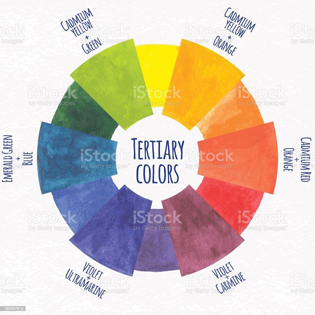 Chart Circle Color Swatch Paint Watercolor Paints