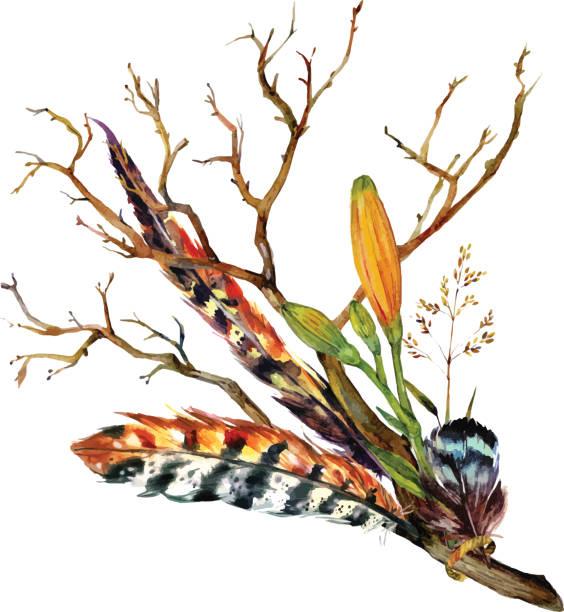 aquarell tiger lily - zigeunerleben stock-grafiken, -clipart, -cartoons und -symbole