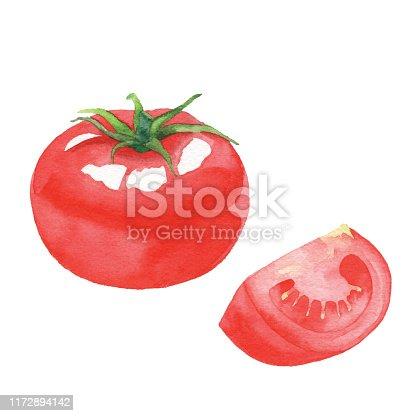 Vector illustration of tomato.