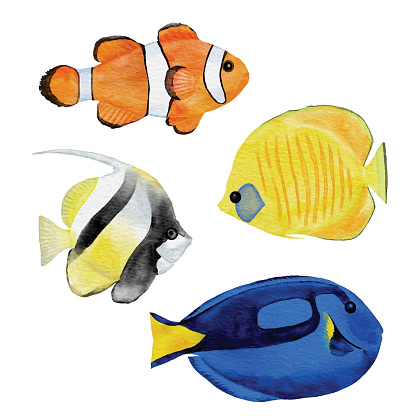 Watercolor Tropical Fishes