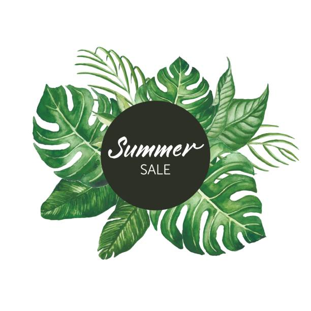 Watercolor tropical leaves frame with SUMMER SALE words modern lettering vector art illustration