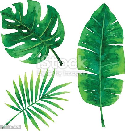 istock Watercolor Tropical Leaves 534407826