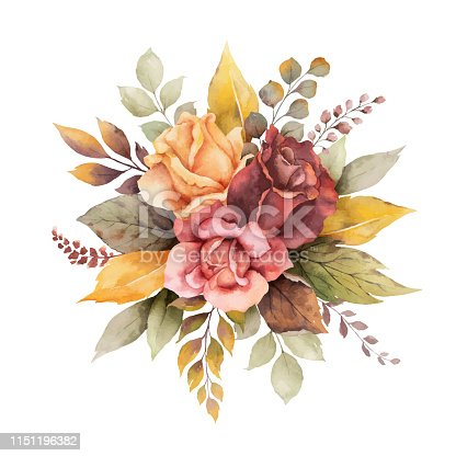 istock Watercolor vector autumn arrangement with roses and leaves isolated on white background. 1151196382