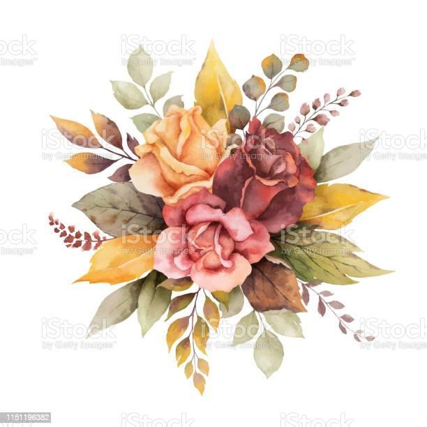 Watercolor vector autumn arrangement with roses and leaves isolated vector id1151196382?b=1&k=6&m=1151196382&s=612x612&h=khbscgwhbohipkz4u2ofogx7qtja12sdddusgfbkrym=