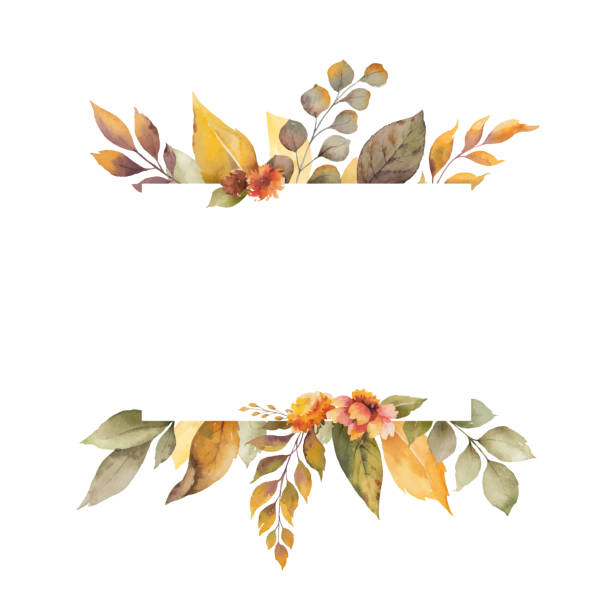 Watercolor vector autumn banner with leaves, flowers and branches isolated on white background. Watercolor vector autumn banner with leaves, flowers and branches isolated on white background. Illustration for greeting cards, wedding invitations, floral poster and decorations. fall stock illustrations