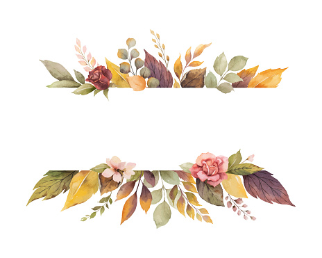 Watercolor vector autumn banner with roses and leaves isolated on white background. clipart