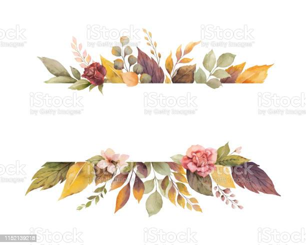Watercolor vector autumn banner with roses and leaves isolated on vector id1152139218?b=1&k=6&m=1152139218&s=612x612&h=hqgxks6nftv7l9 dchhqasa6dbeqkta0uvpmstyxxue=