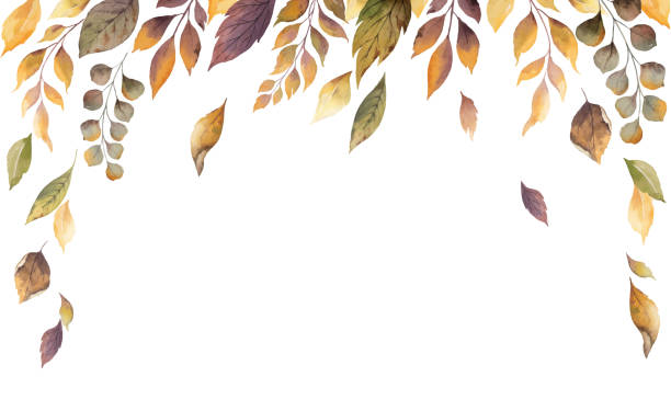 watercolor vector autumn card with fallen leaves isolated on white background. - autumn stock illustrations