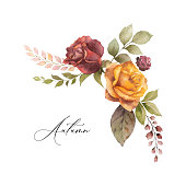 Watercolor vector autumn wreath with rose and leaves isolated on white background. Arrangement for greeting cards, wedding invitations, invite and decorations.