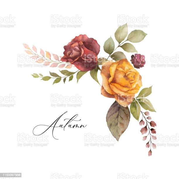 Watercolor vector autumn wreath with rose and leaves isolated on vector id1153397956?b=1&k=6&m=1153397956&s=612x612&h=ulglq oa3x20hrfgpebft6mozi63e sa zk2ziggsim=
