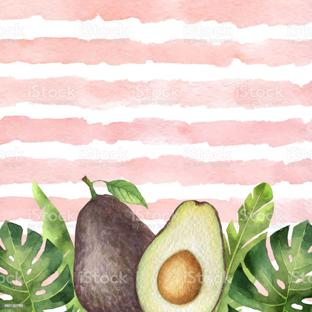 Watercolor vector banner tropical leaves and avocado isolated on the background of stripes. vector art illustration