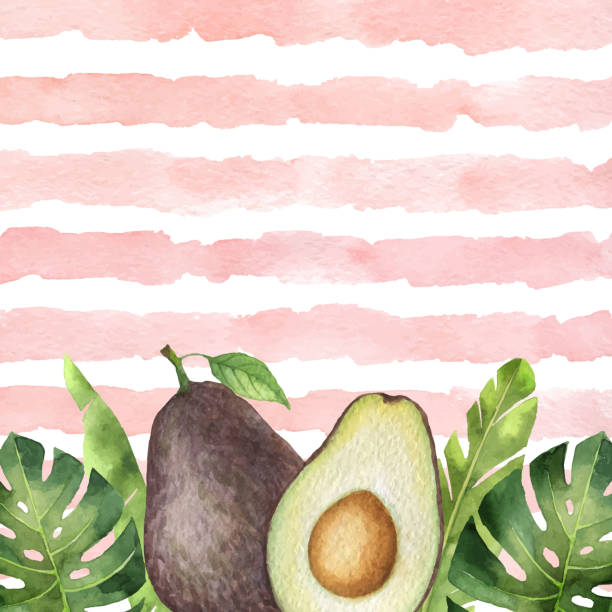 Watercolor vector banner tropical leaves and avocado isolated on the background of stripes. Watercolor vector banner tropical leaves and avocado isolated on the background of stripes. Illustration for kitchen decor, cooking magazines, greeting cards. Summer design with place for text. avocado patterns stock illustrations