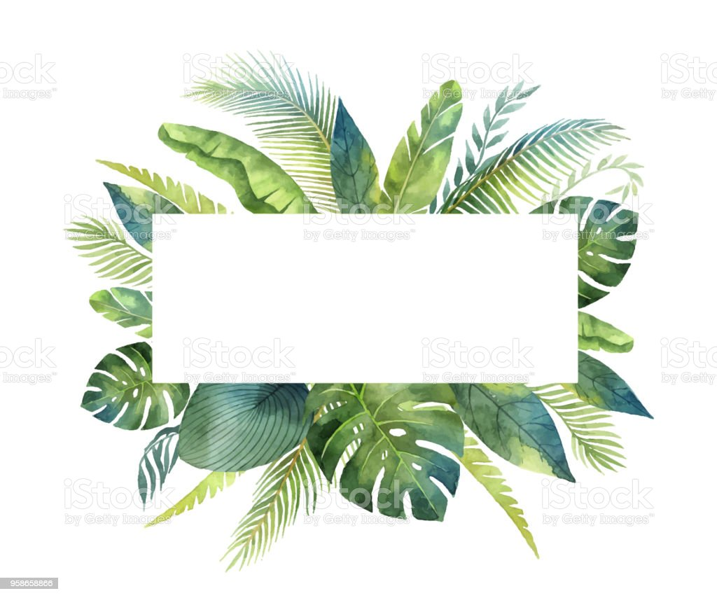 Watercolor vector banner tropical leaves and branches isolated on white background. vector art illustration