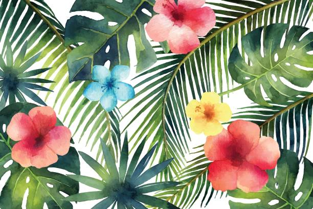 Watercolor vector banner tropical leaves and branches isolated on white background. Watercolor vector banner tropical leaves and branches isolated on white background. Illustration for design wedding invitations, greeting cards, postcards. tropical flower stock illustrations