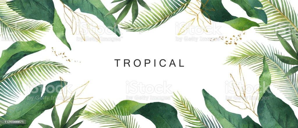 Suluboya vektör afiş tropikal izole üzerinde beyaz arka plan bırakır. - Royalty-free Ağaç Vector Art