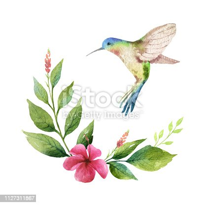 Watercolor vector card green leaves, hummingbird and flowers isolated on white background.