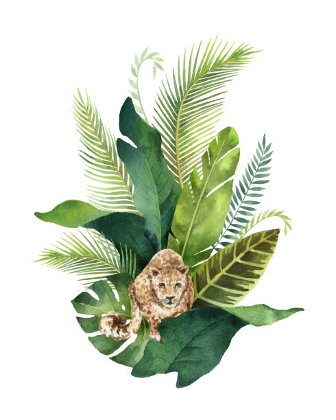 watercolor vector card tropical leaves and leopard isolated on white background. - exotic animals stock illustrations