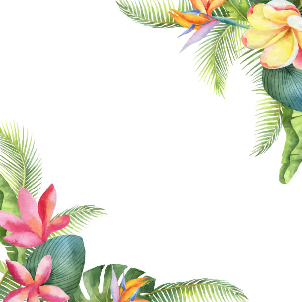 Watercolor vector card with tropical leaves and bright exotic flowers isolated on white background. Watercolor vector card with tropical leaves and bright exotic flowers isolated on white background. Illustration for design wedding invitations, greeting cards, postcards. tropical flower stock illustrations