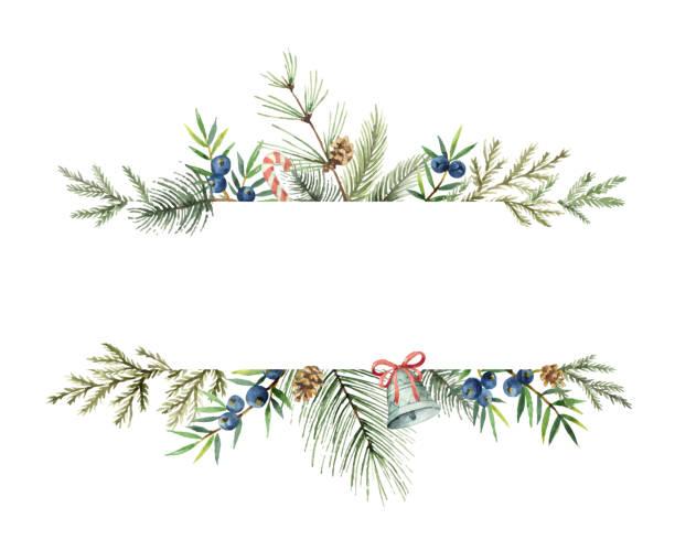 aquarell vektor weihnachten banner mit tannenzweigen und platz für text. - laub winter stock-grafiken, -clipart, -cartoons und -symbole