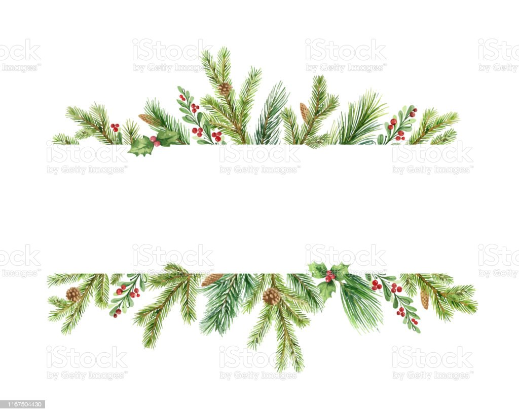 Watercolor vector Christmas banner with green pine branches and place for text. - Векторная графика Pinaceae роялти-фри