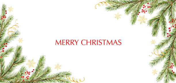 bildbanksillustrationer, clip art samt tecknat material och ikoner med akvarell vektor jul banner med gröna tall grenar och plats för text. - christmas frame
