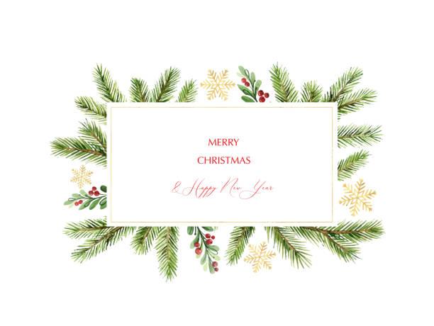 ilustraciones, imágenes clip art, dibujos animados e iconos de stock de bandera navideña vectorial de acuarela con ramas de pino verde y lugar para texto. - marcos de festividades y de temporada