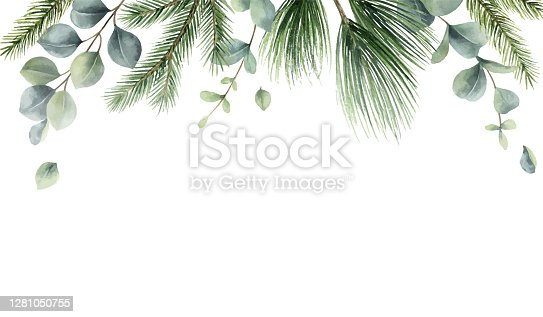 istock Watercolor vector Christmas card with fir branches and eucalyptus leaves. Hand painted illustration for greeting floral postcard and invitations isolated on white background. 1281050755