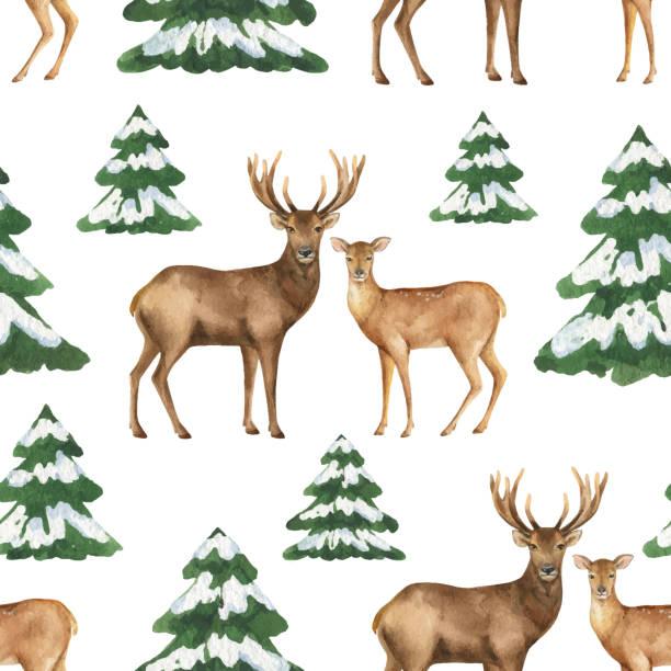 aquarell vektor weihnachten musterdesign mit rehen und grüne tannen. - hirsch stock-grafiken, -clipart, -cartoons und -symbole